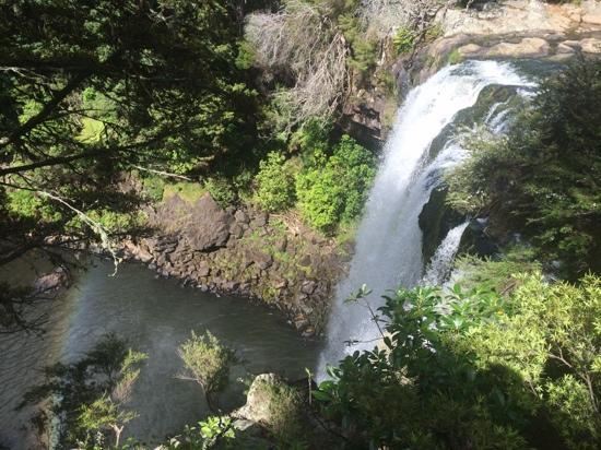 The Sanctuary @ Bay of Islands : Rainbow Falls, kerikeri