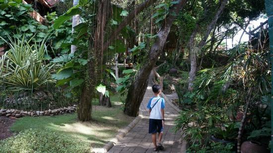 Alona Tropical Beach Resort: Tropical 04
