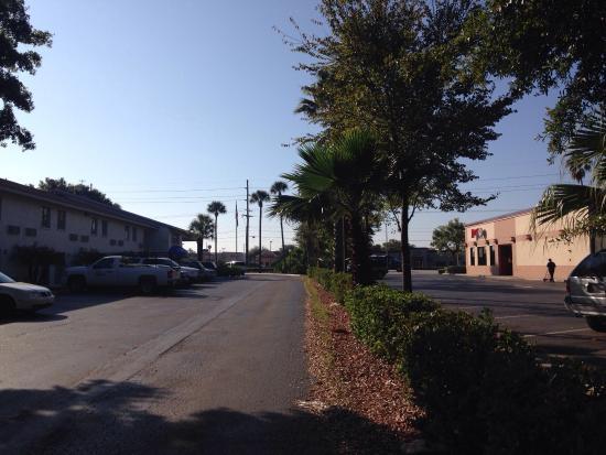 Motel 6 Tampa - Fairgrounds : Nice view