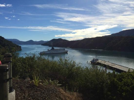 Queen Charlotte Sound : Along Queen Charlotte Drive - Picton to Nelson