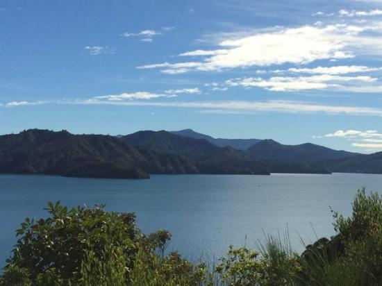 Queen Charlotte Sound: Along Queen Charlotte Drive - Picton to Nelson