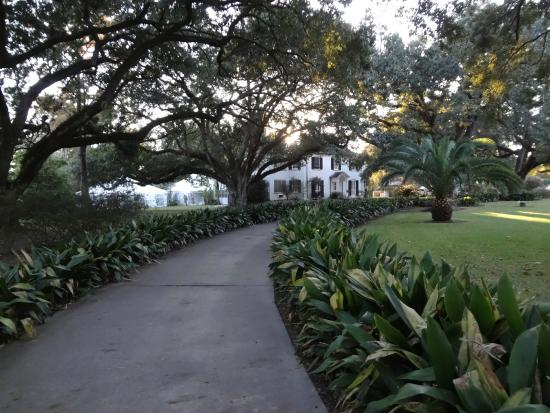 Grand Bayou Noir : Beautiful live oaks and manicured lawns.