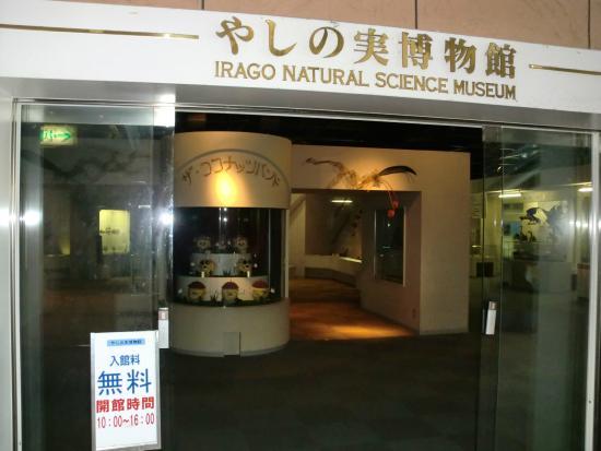 Yashinomi Museum : 1