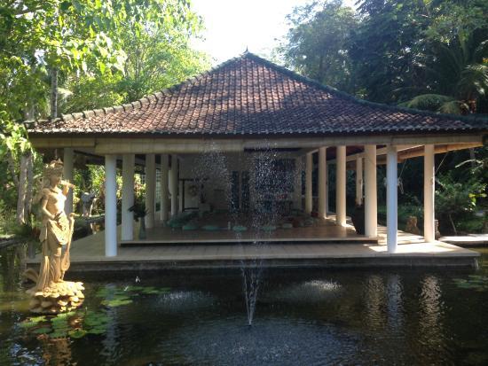 Jiwa Damai Organic Garden & Retreat: Recreation area