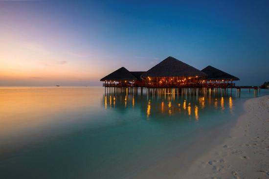 The 10 Closest Hotels To Medhufushi Island Resort