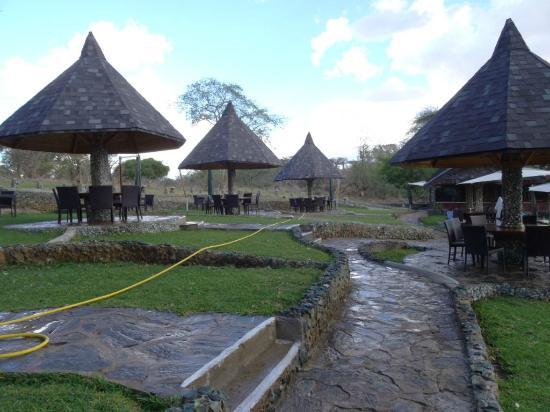 Tarangire Sopa Lodge: lunchen bij het zwembad