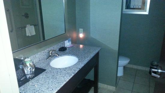 Hampton Inn Huntington University Area: Bathroom was spacious & very nice
