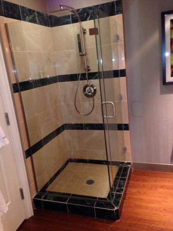 The Westin Houston Downtown: Shower in suite