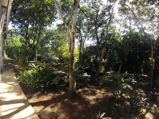 Salon bild von au jardin des colibris deshaies for Au jardin des colibris