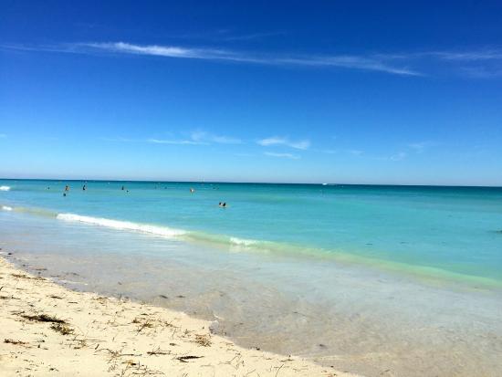 Haulover Beach Park: Praia