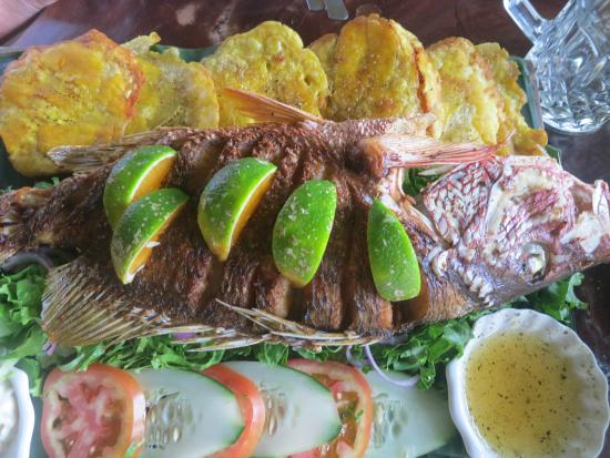 Drakes Kitchen, Casa El Tortugo : Local fish