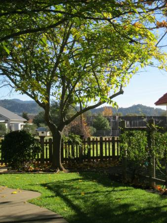The Sunburst Calistoga : Out in nature