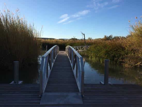 Rio Grande Village Nature Trail: Bridge over Rio Grand River marsh