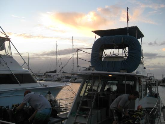 Maui Dreams Dive Co. : Departure at sunrise
