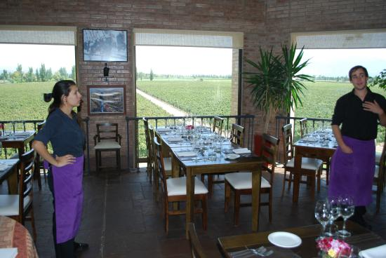 Argentina Wine Tours : Lunch Setting During Wine Tasting Tour