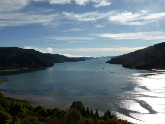 Okiwa Bay Lodge: View of Queen Charlotte Sound