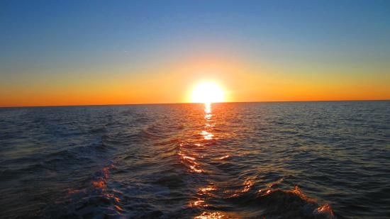 ParrotDise Express Day Tours: Sunset out on the Gulf of Mexico