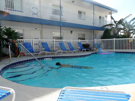 Great Heron Inn : Swimming pool