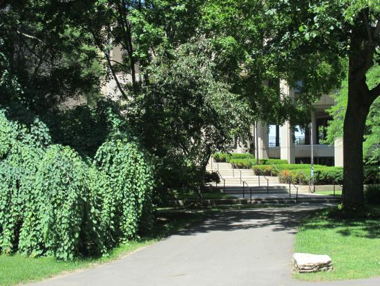 Northwestern University : Walking through the campus