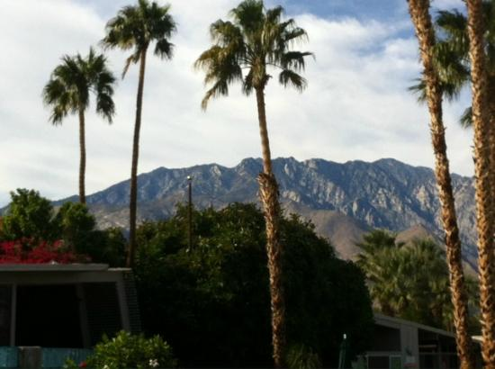 Terra Cotta Inn: Loved waking up to this every morning!