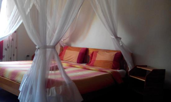 Jungle Junction Campsite: restful rooms