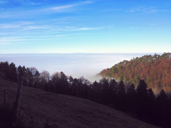 Reigoldswil, Switzerland: Swiss alps can be seen in the distance, beautiful day even with the fog!