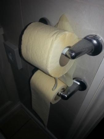 Ramada Crawley Gatwick : Yellow toilet rolls. Nice.