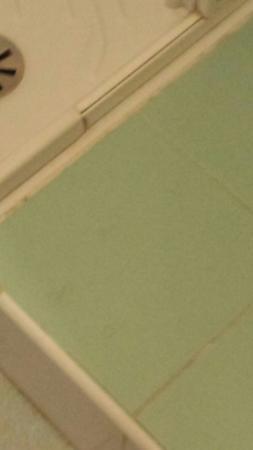 Ambrosiana : Presenza di peli pubici sul pavimento vivino la doccia,�� scandaloso!