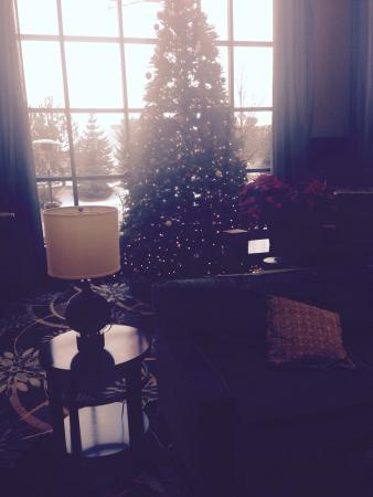 Staybridge Suites Minneapolis Bloomington: Merry Christmas