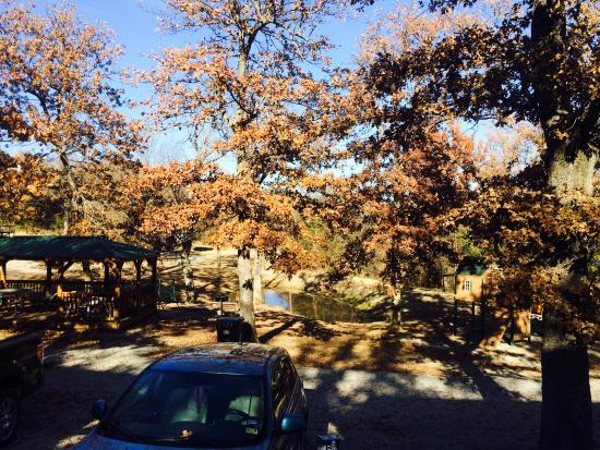 Claxton's Cabins: Thanksgivve 2014