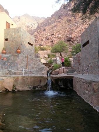 Termas de Fiambala: Piletas de aguas termales (mas de 8 de distintas temperaturas)