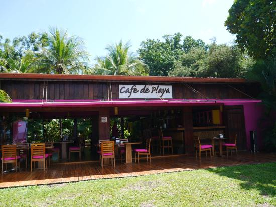 Cafe De Playa : View from the beach