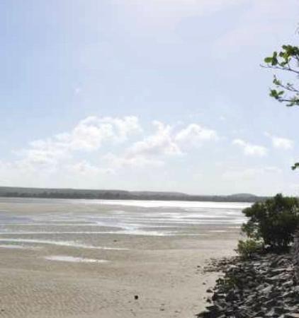 Barra de Sao Miguel, AL: Praia das Conchas