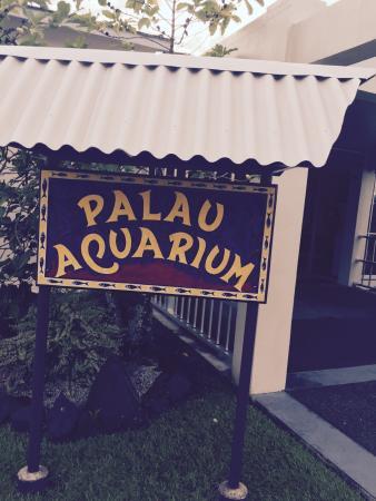 Palau Aquarium : Outside
