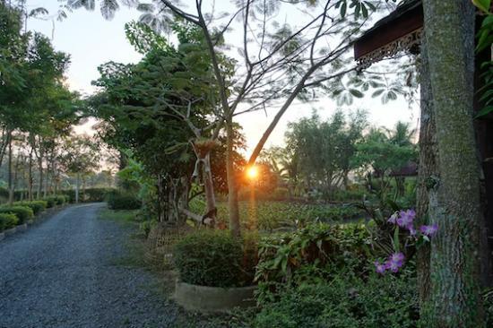 Baan Klang Tong: 静かな朝の風景