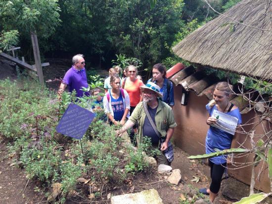Maya Traditions Foundation: Garden Tour