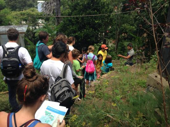 Maya Traditions Foundation: Highly educational