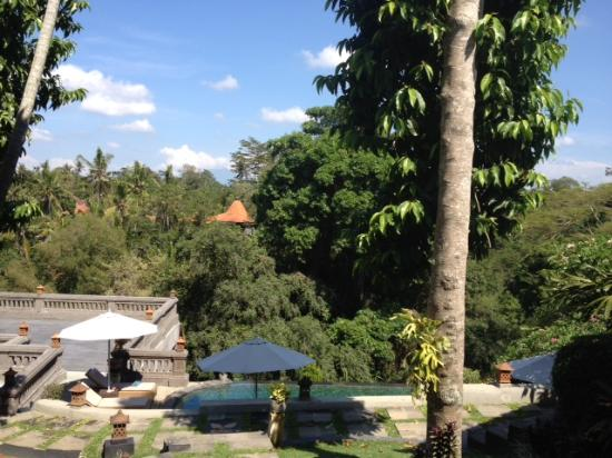 Ubud Dedari Villas: The view from our villa