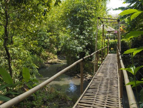 Plataran Canggu Resort & Spa : Bridge