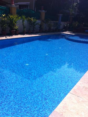 Martin's Comfort: The Sparkling Swimming Pool