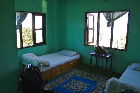 Tashi Delek Guest Lodge : Camera con finestre verso lHimalaya.