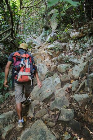 Green Discovery: Some tough uphills for those not in good hiking shape!