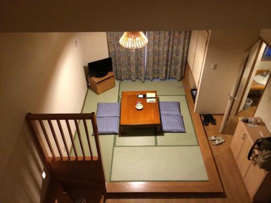 Sawauchi Gingakogen Hotel: ロフトからの眺め