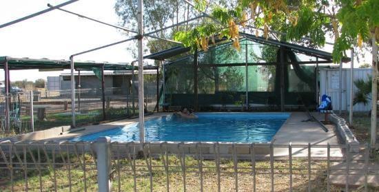 Kulgera Roadhouse Hotel Motel : pool