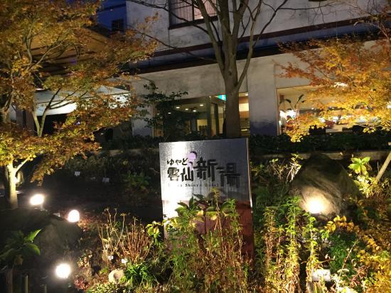 Toyokan Bekkan Shinyu Hotel: 旅館玄関