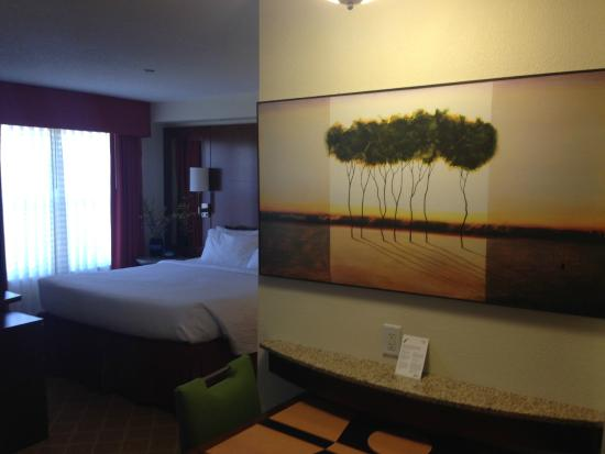 Residence Inn Dulles Airport at 28 Centre: Room/Suite.
