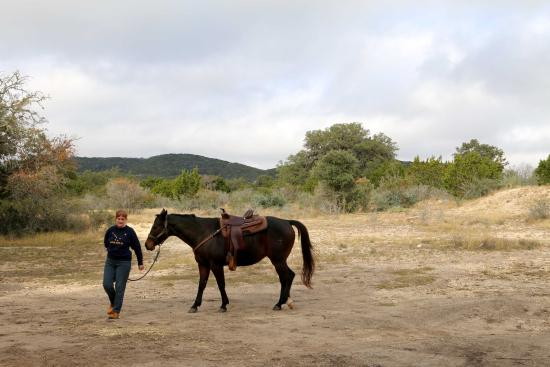 Bar M Guest Ranch, LLC: learning to trust your horse and have him trust you