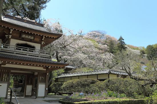 Jochiji Temple: 楼門