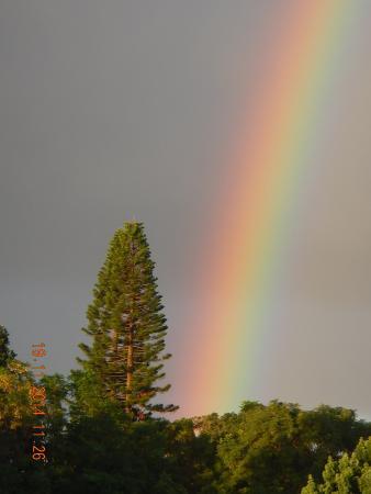 Hale Ho'okipa Inn Makawao: Rainbow over Hale Hookipa Inn