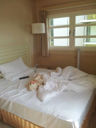 Kindness Hotel - Tainan Minsheng : 空間大